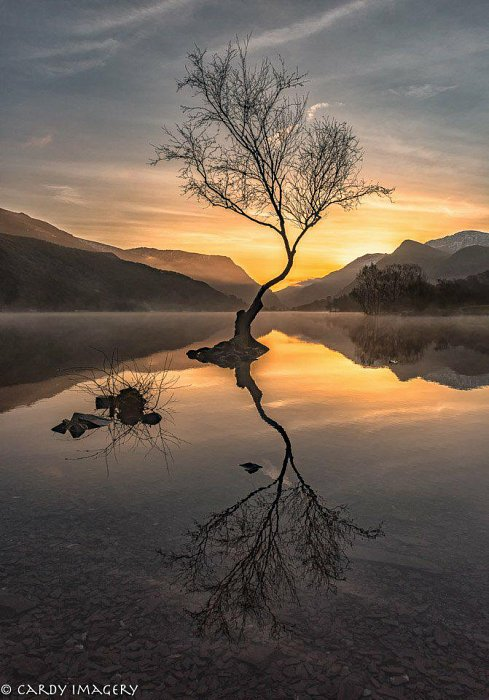 Padarn Sunrise *Chromaluxe*