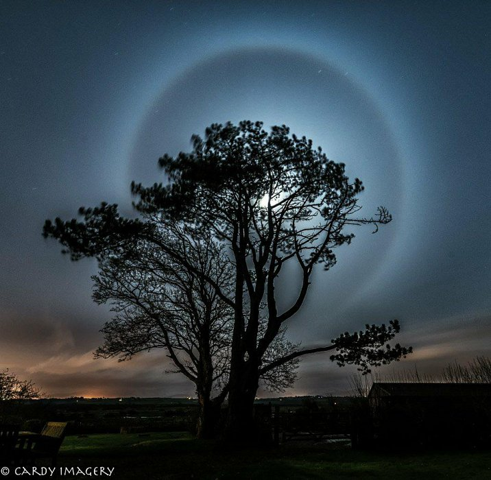 Moon Halo *Chromaluxe*