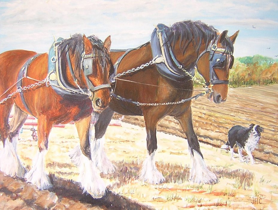 Ploughing 4
