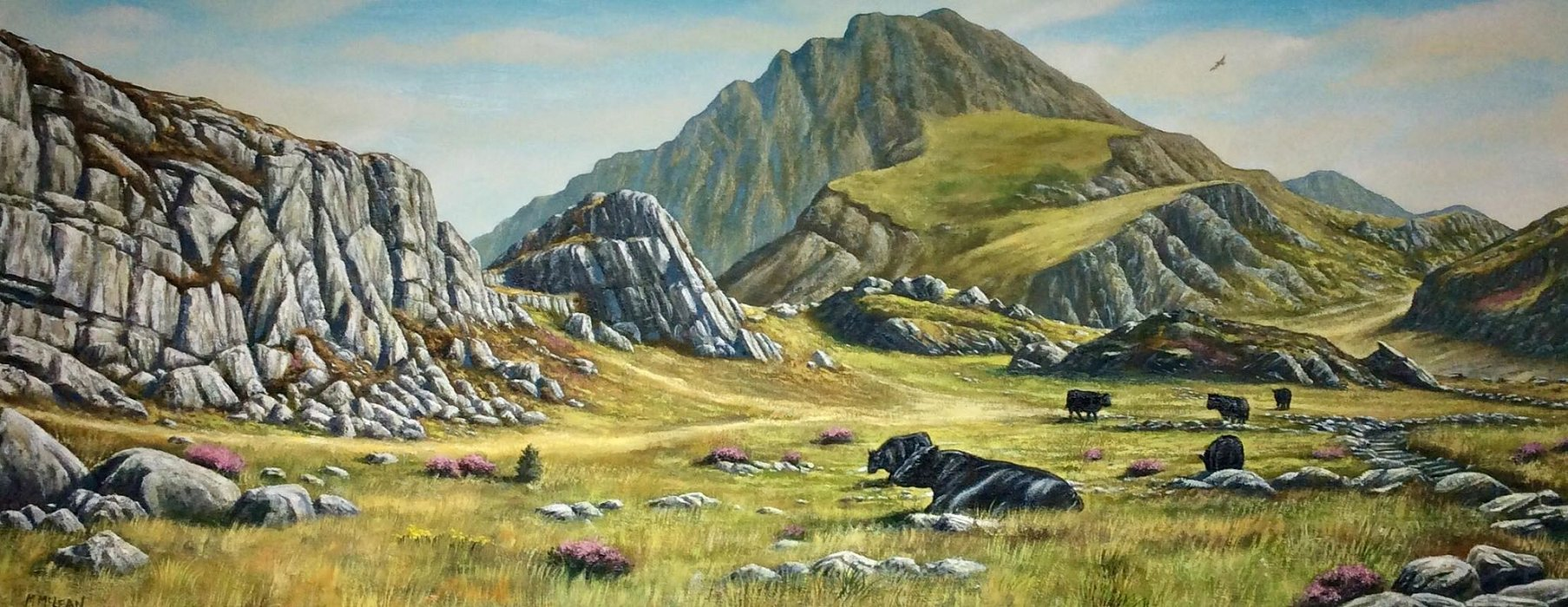 Welsh Blacks At Tryfan
